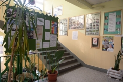 img-05-hol-skole