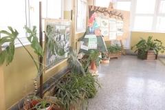 img-06-hol-skole