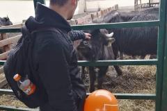 img-01-sajam-poljoprivrede-ns-2019