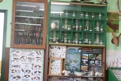 img-04-kabinet-za-lovstvo-i-ribarstvo